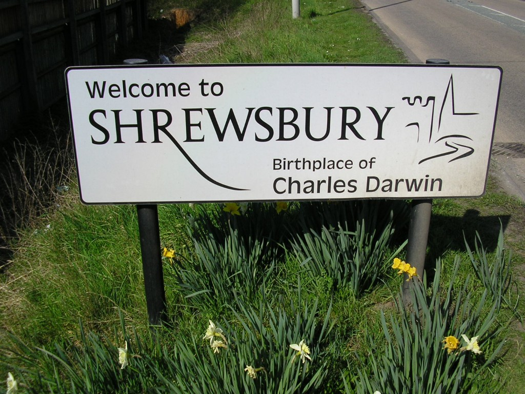 IT Career Opportunities in Shrewsbury